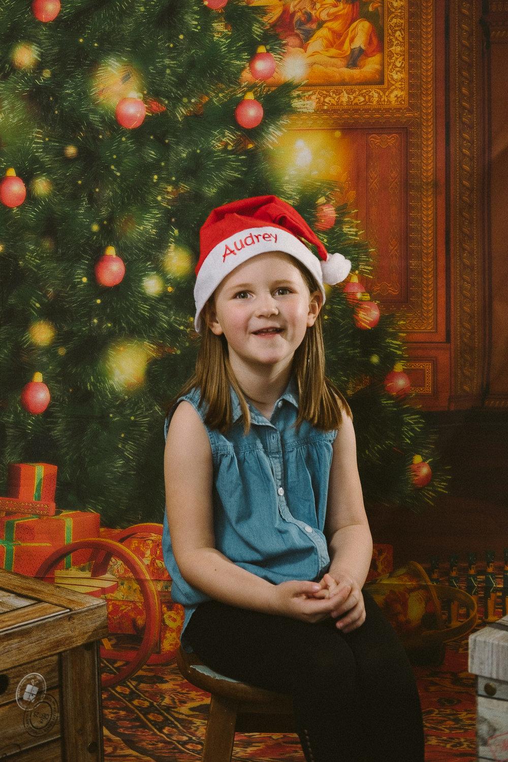 Festive Portrait-0002.jpg
