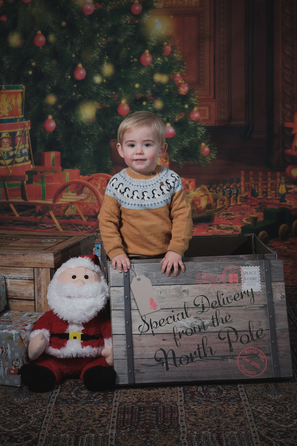 Indoor mini sessions £30 - -At your home or a studio location.- Usually themed around an event such as Christmas.- 15 minute shoot- 3 high res photos ready to print- Password protected online gallery- Maximum 3 children-Minimum age 4 months