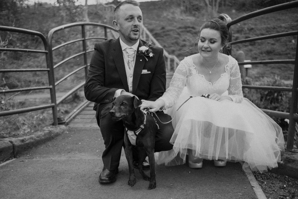 Black and white photo of bride and groom stroking dog on bridge at Wallsend Hall