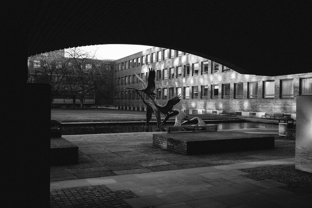 Five Swans statue at Newcastle Civic Centre in black and white
