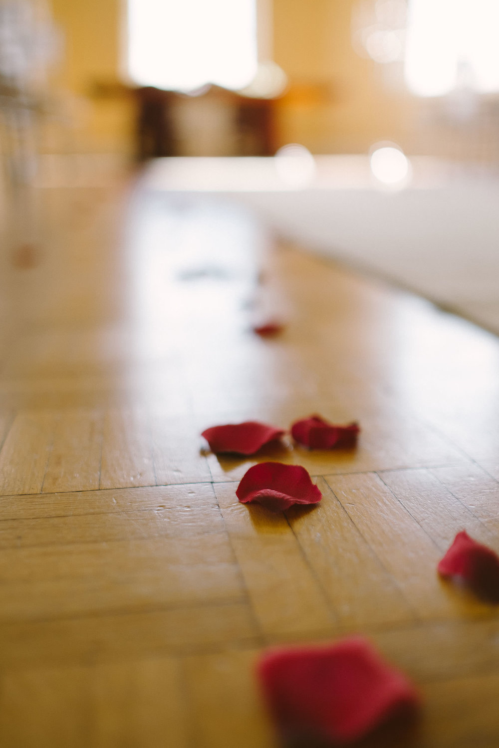 Close up of rose petals on floor of ceremony room at Wallsend Hall