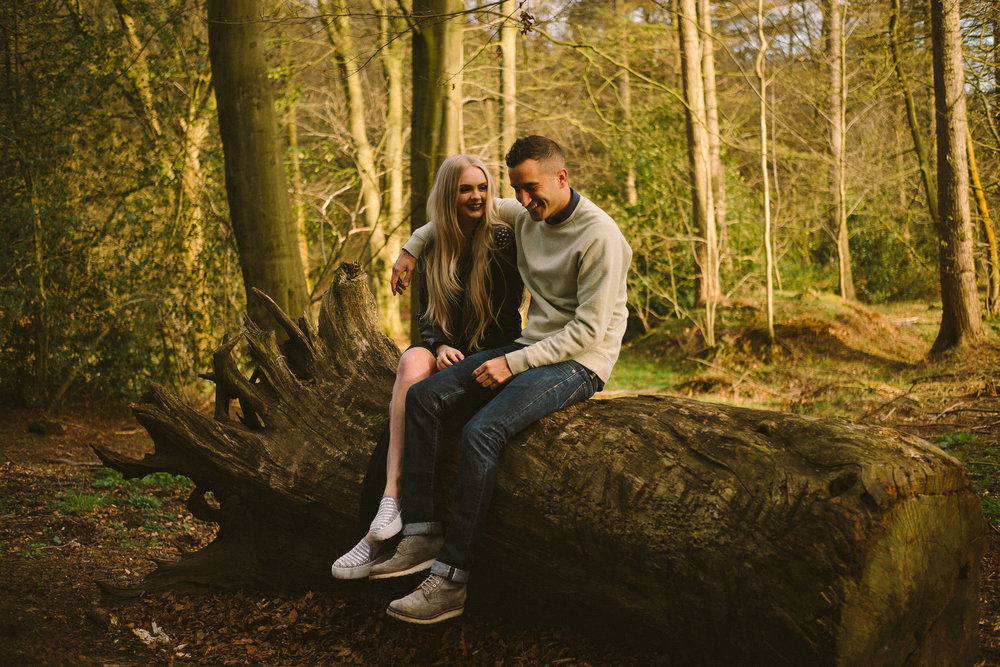 An engaged couple sitting on a fallen tree and laughing in Chopwell Woods