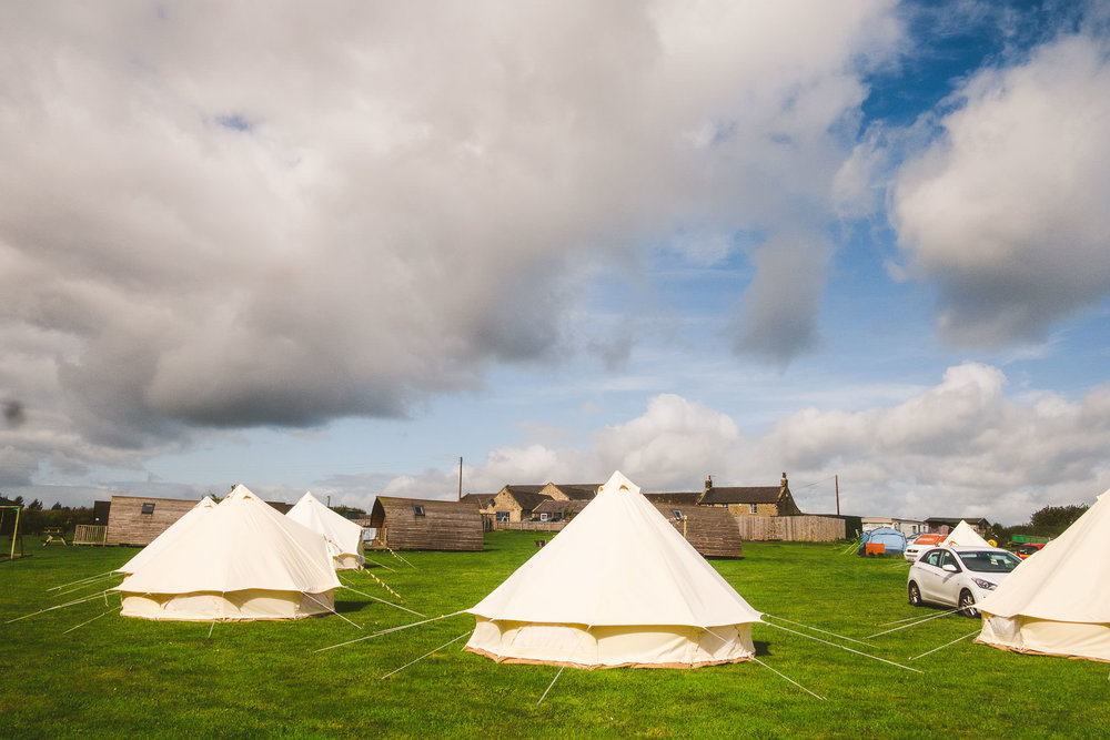 You can see the Glamping pods behind the tents in this shot from the paddock at Northside Farm