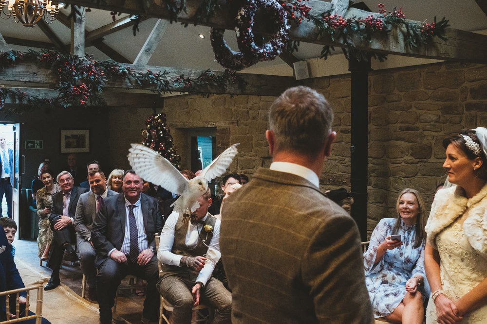 Owl flies down aisle during wedding ceremony