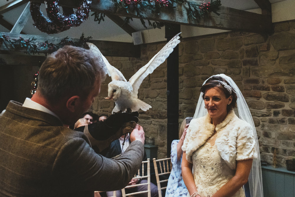 Owl carries rings to groom during wedding ceremony