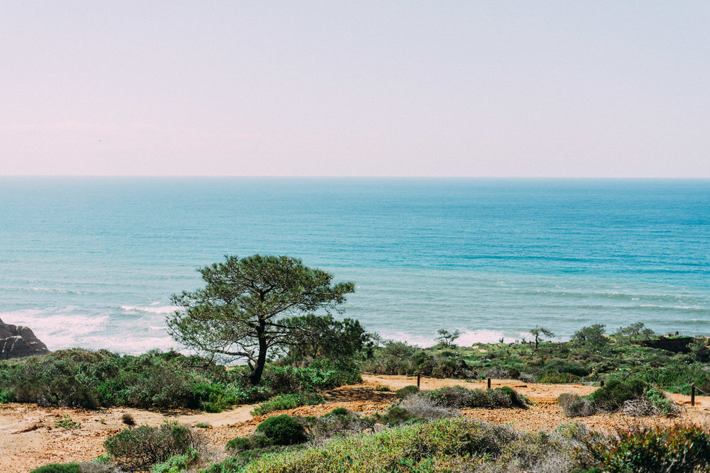 Torrey Pines National Park