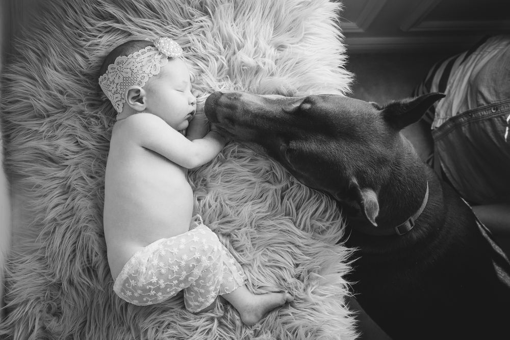 newborn photography-17.jpg