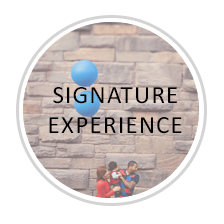 experience-signature.png