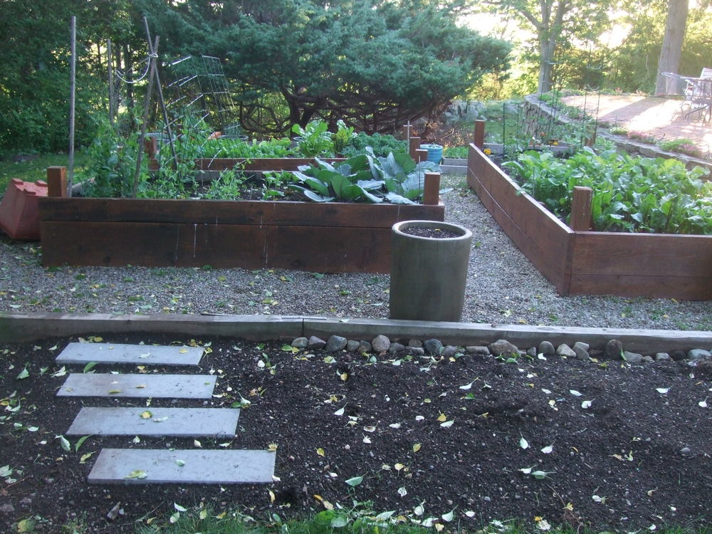Raised bed vegetable garden. Scituate, MA