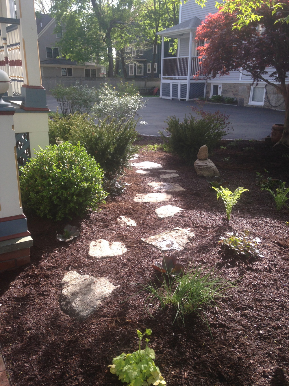 Front yard redesign, Newton MA