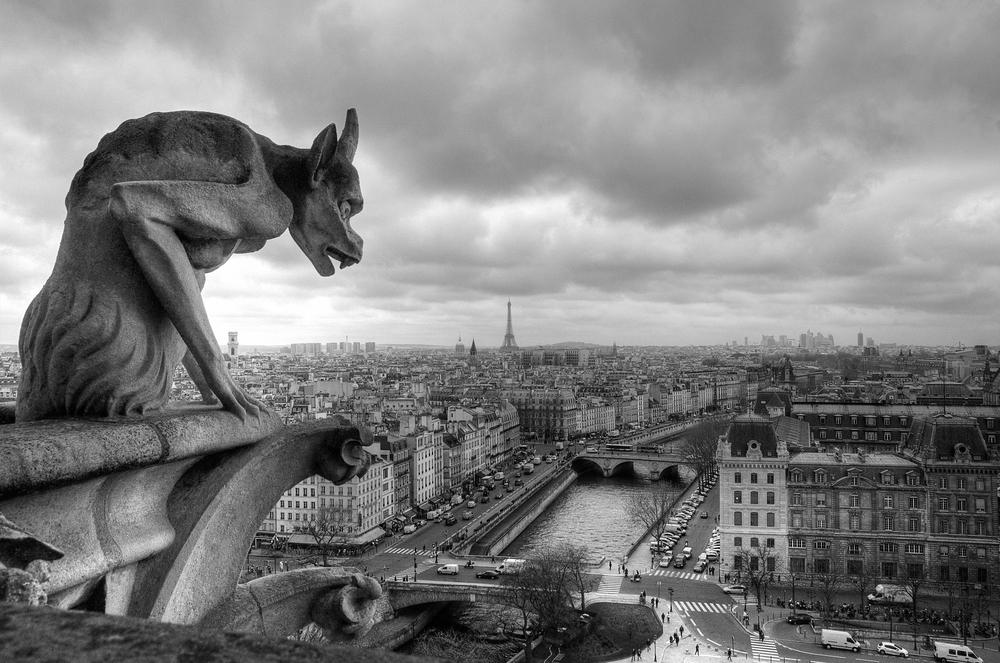 Chimére de Notre-Dame de Paris by Alan Tigoulet