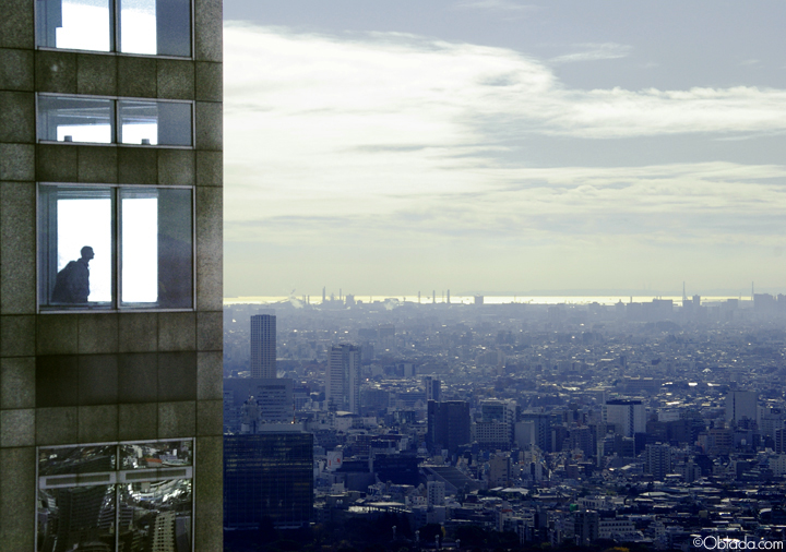 View from the 45th floor of Tokyo Metropolitan Government Office (2009 ©Deborah Clague).