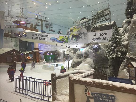 Ski Dubai (©Deborah Clague, 2016).