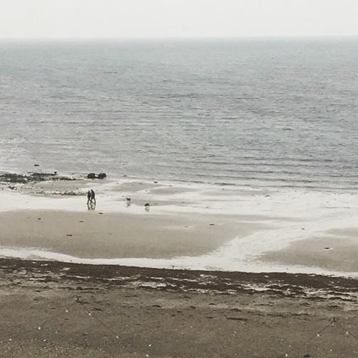 View from my hotel room overlooking Douglas Bay.(©Deborah Clague)