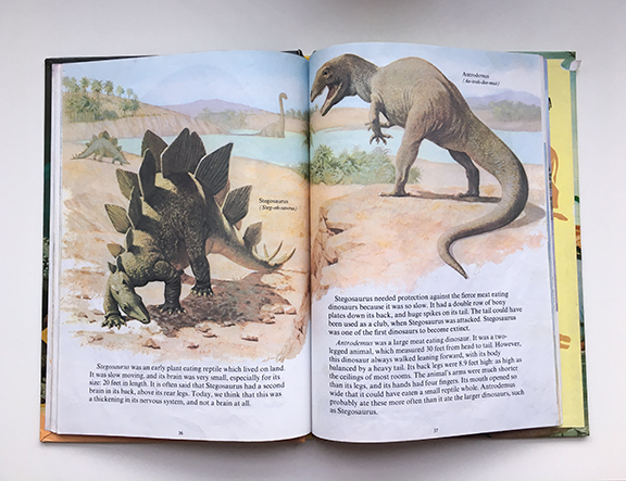 The illustrations captivated me as a child (©Deborah Clague)