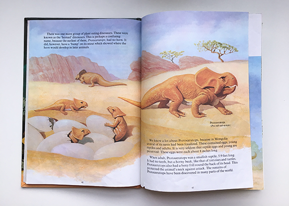 Up until the age of thirteen, I wanted to be a palaeontologist because of my early curiosity about dinosaurs inspired by this book (©Deborah Clague)