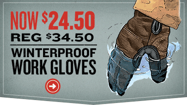 11094-Winter-Work-Gloves-0114-CHEV2.png