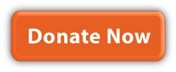 donate-now.jpg