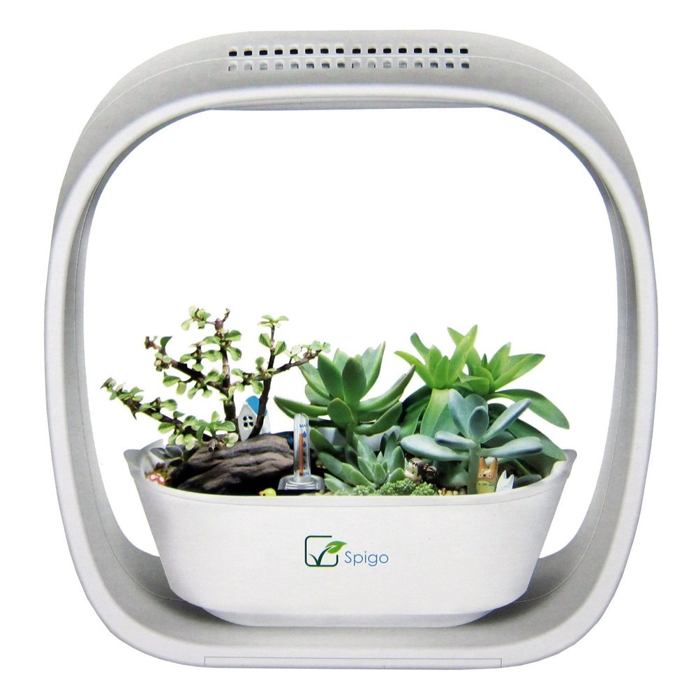 Indoor LED Light Garden -