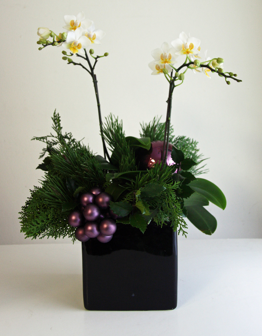 Holiday Orchid 4.jpg