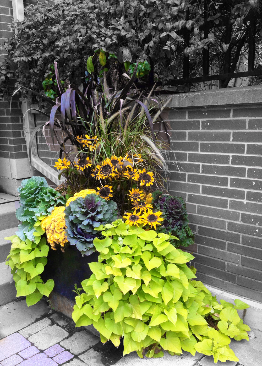 outdoor urn 1.jpg