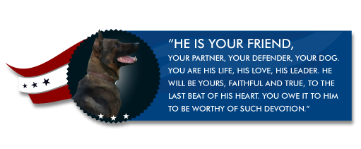 warrior-dog-foundation-welcome.png