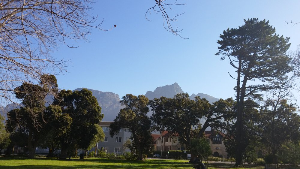 View of Table Mountain from Rondebosch.
