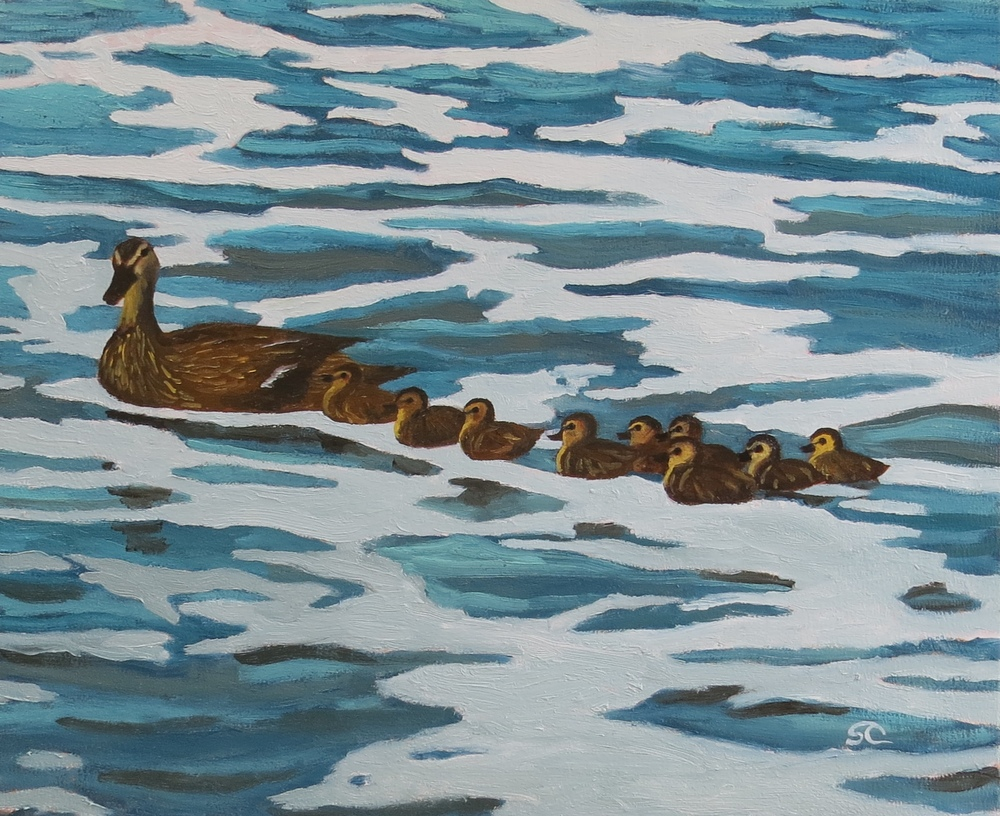 """Surf Ducks"" oil on birch panel 20 x 24"