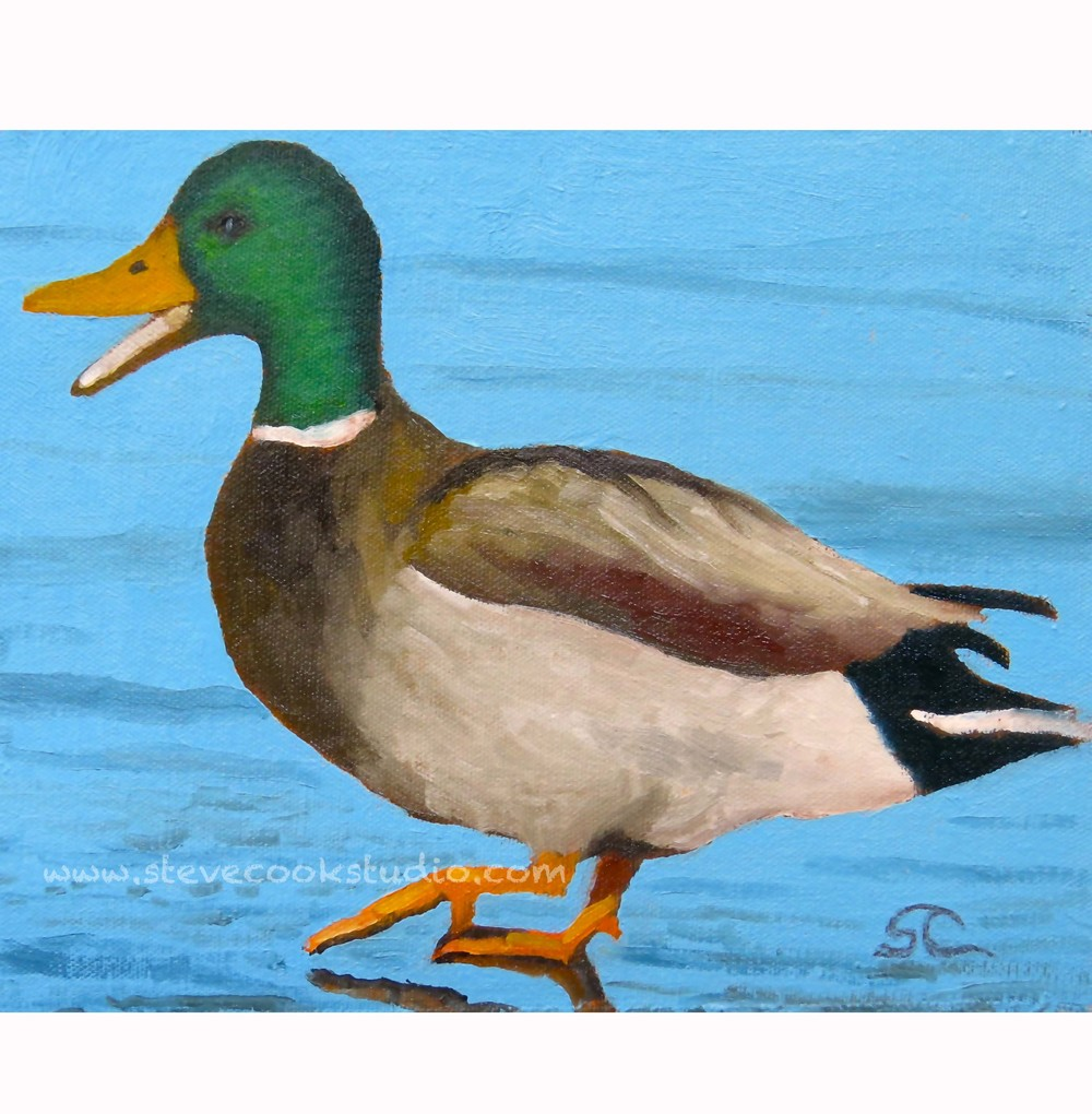 """Duck!"" oil on canvas panel 8 x 10"