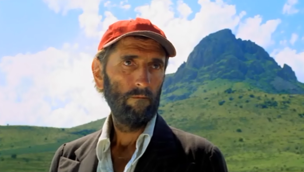 Harry Dean Stanton Paris Texas.png