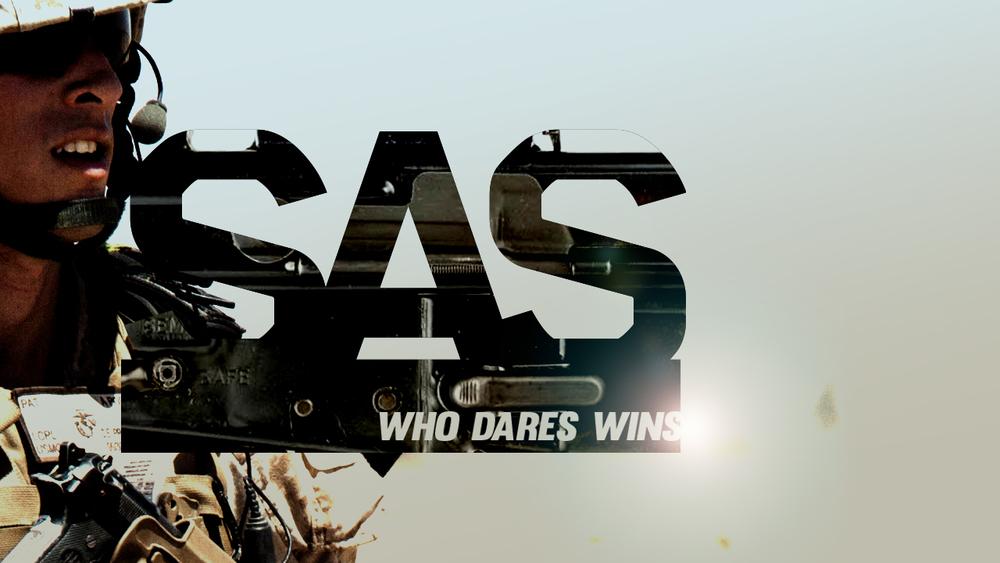 SAS_p03.jpg