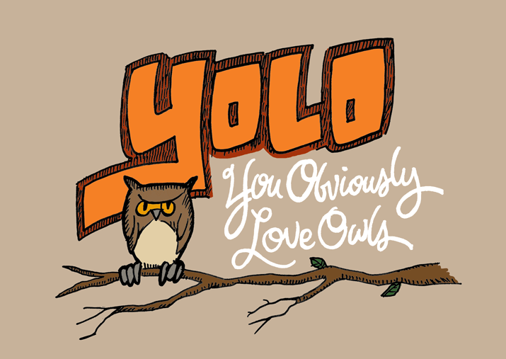 YOLO (You Obviously Love Owls)