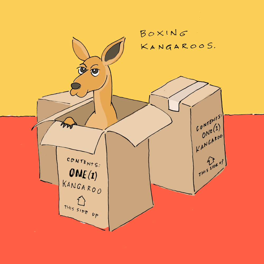 Boxing-Kanagroos-97.png