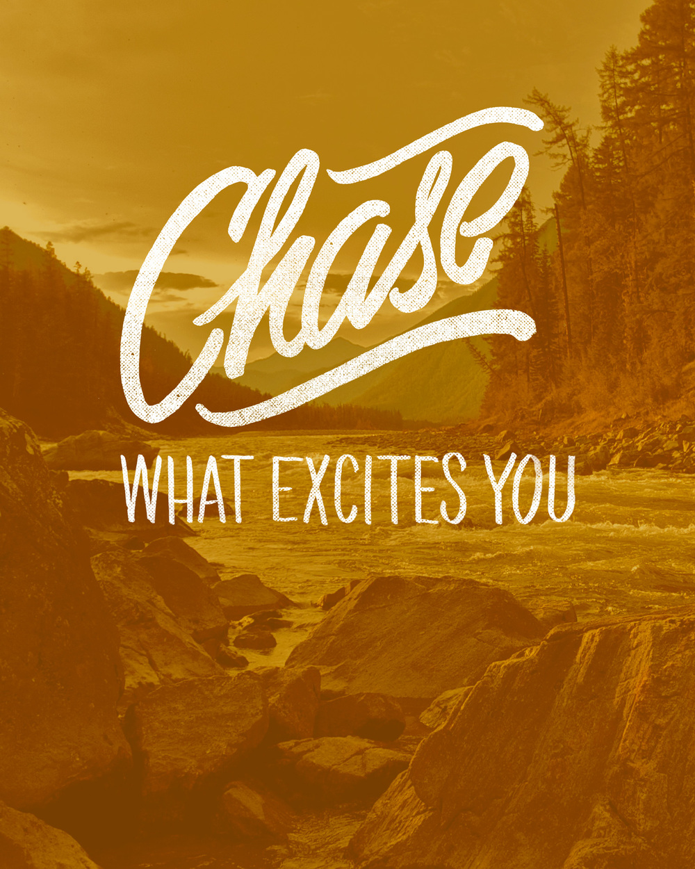 chase what excites you