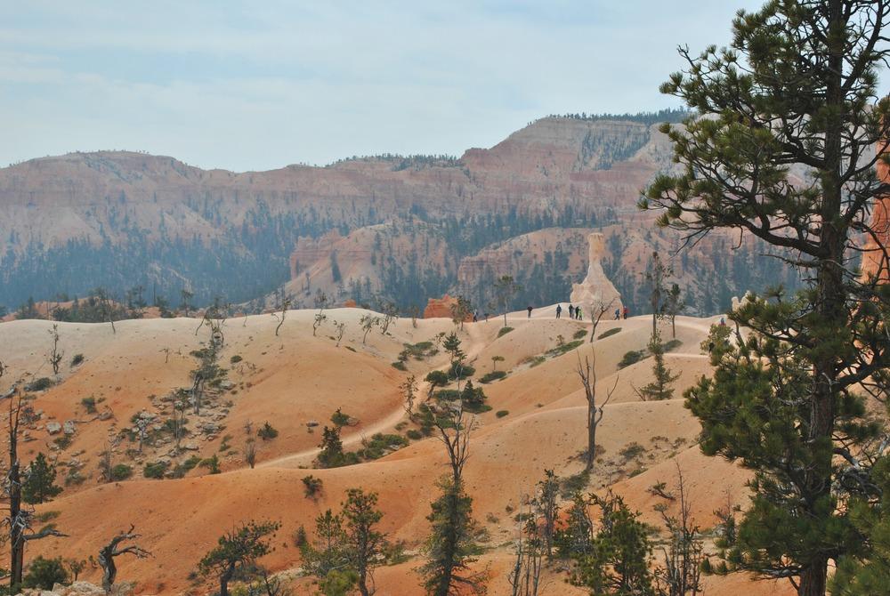 Bryce Canyon (13).jpg
