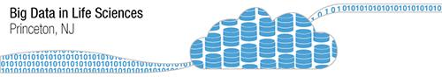 bigdata_logo_bluebanner_resized.jpg