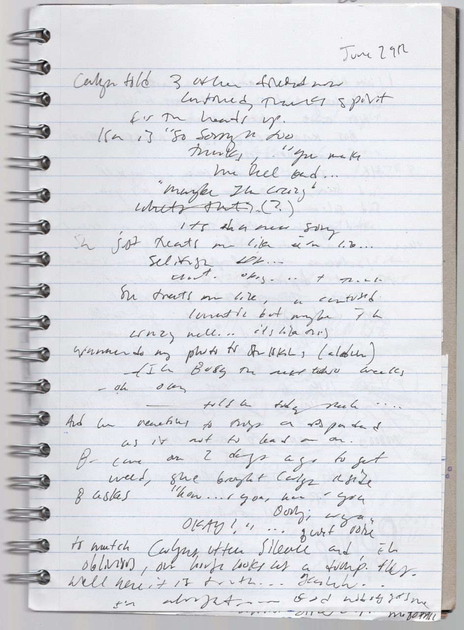 The scribblings in a journal, transcribed above