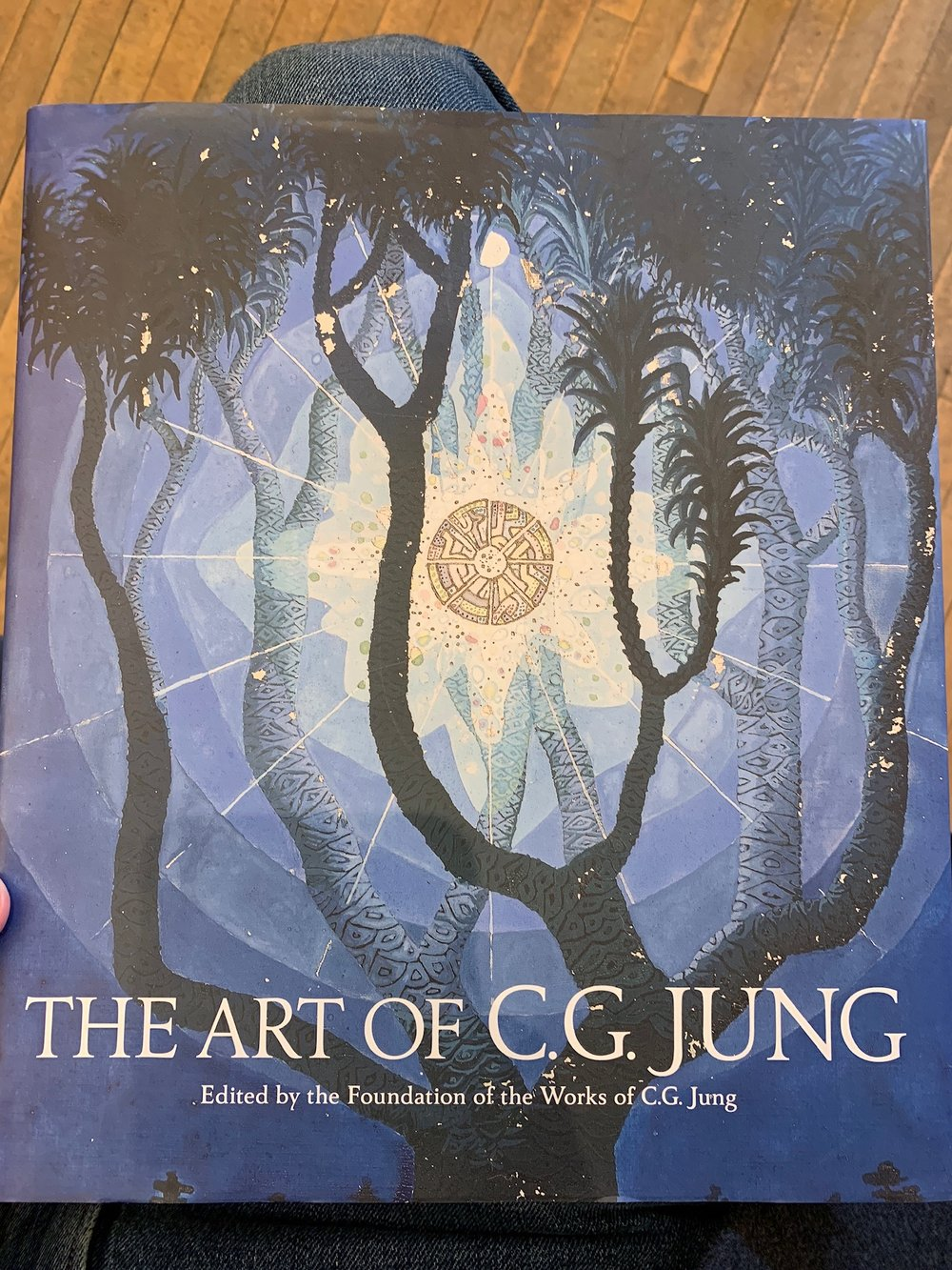 Edited by The Foundation of the Works of C.G. Jung. W.W. Norton & Company, 2019. Including 254 illustrations.