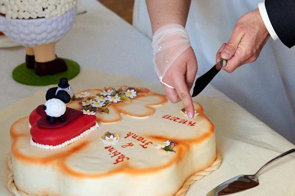Hochzeitsbilder-Torte.jpg