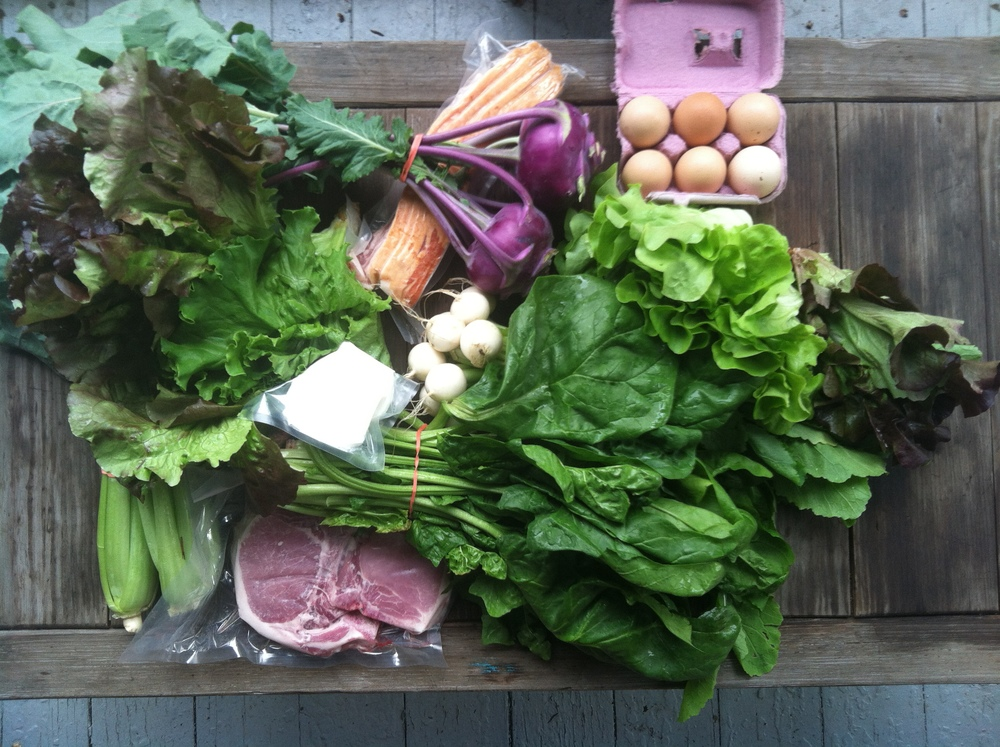 The lush contents of a CSA box from the Finger Lakes area of New York State