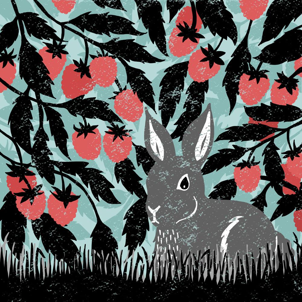 raspberry-bunny-web.jpg