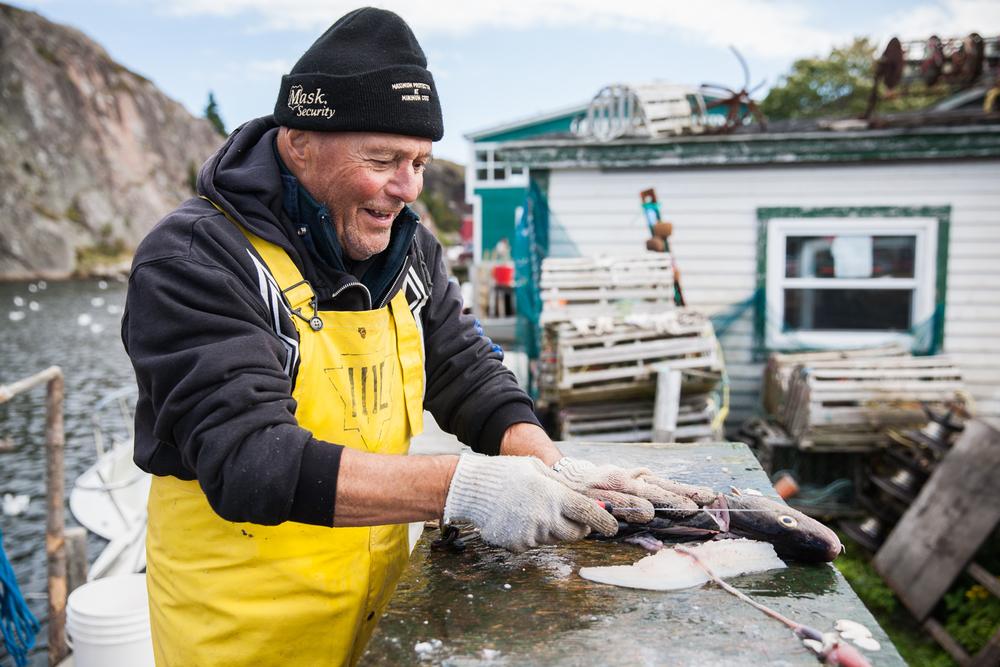 Simpson-Newfoundland-1.jpg