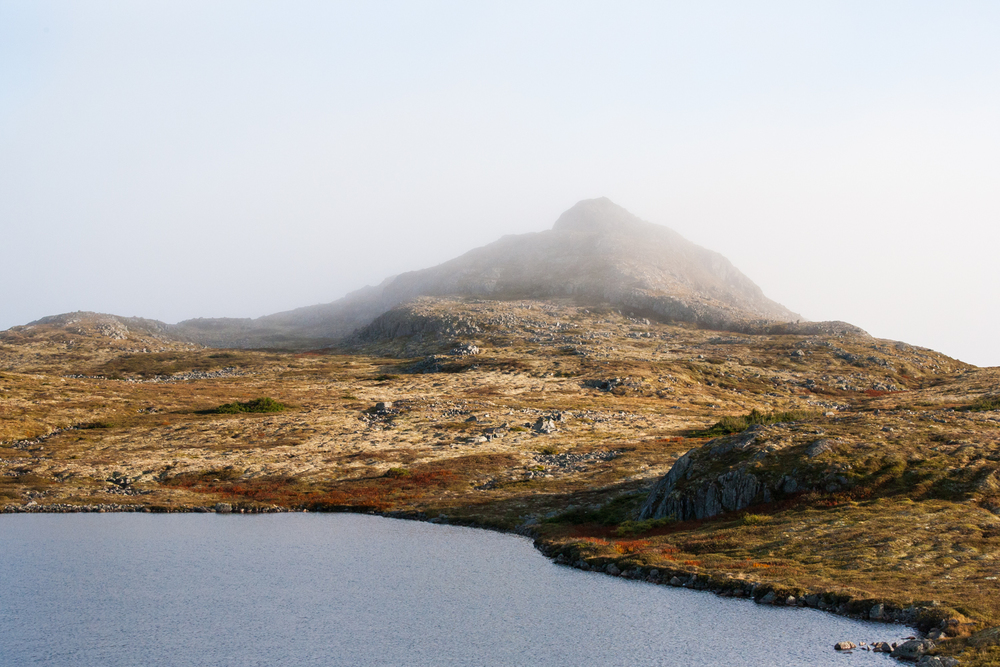 Simpson-Newfoundland-10.jpg