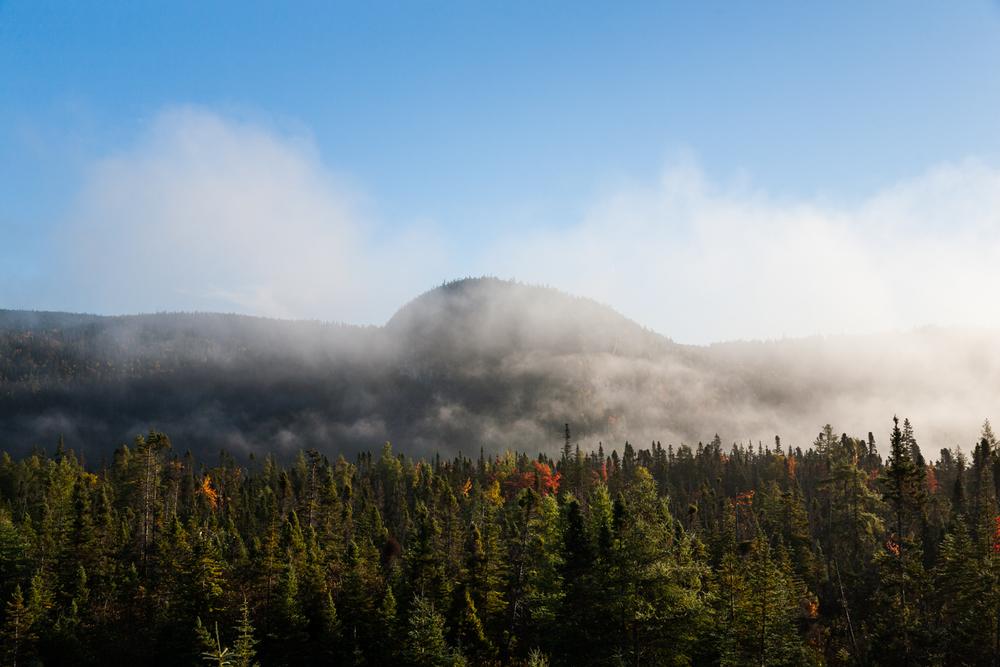 Simpson-Newfoundland-16.jpg