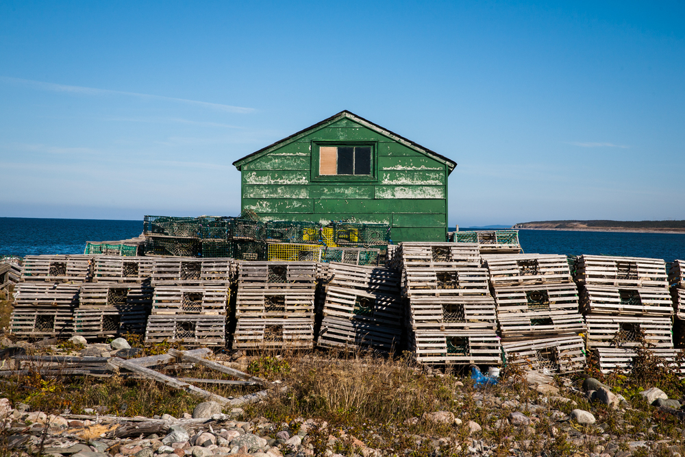 Simpson-Newfoundland-17.jpg