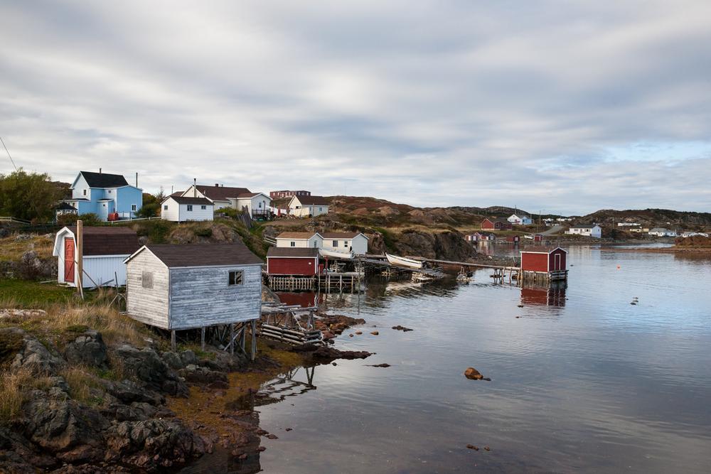 Simpson-Newfoundland-28.jpg
