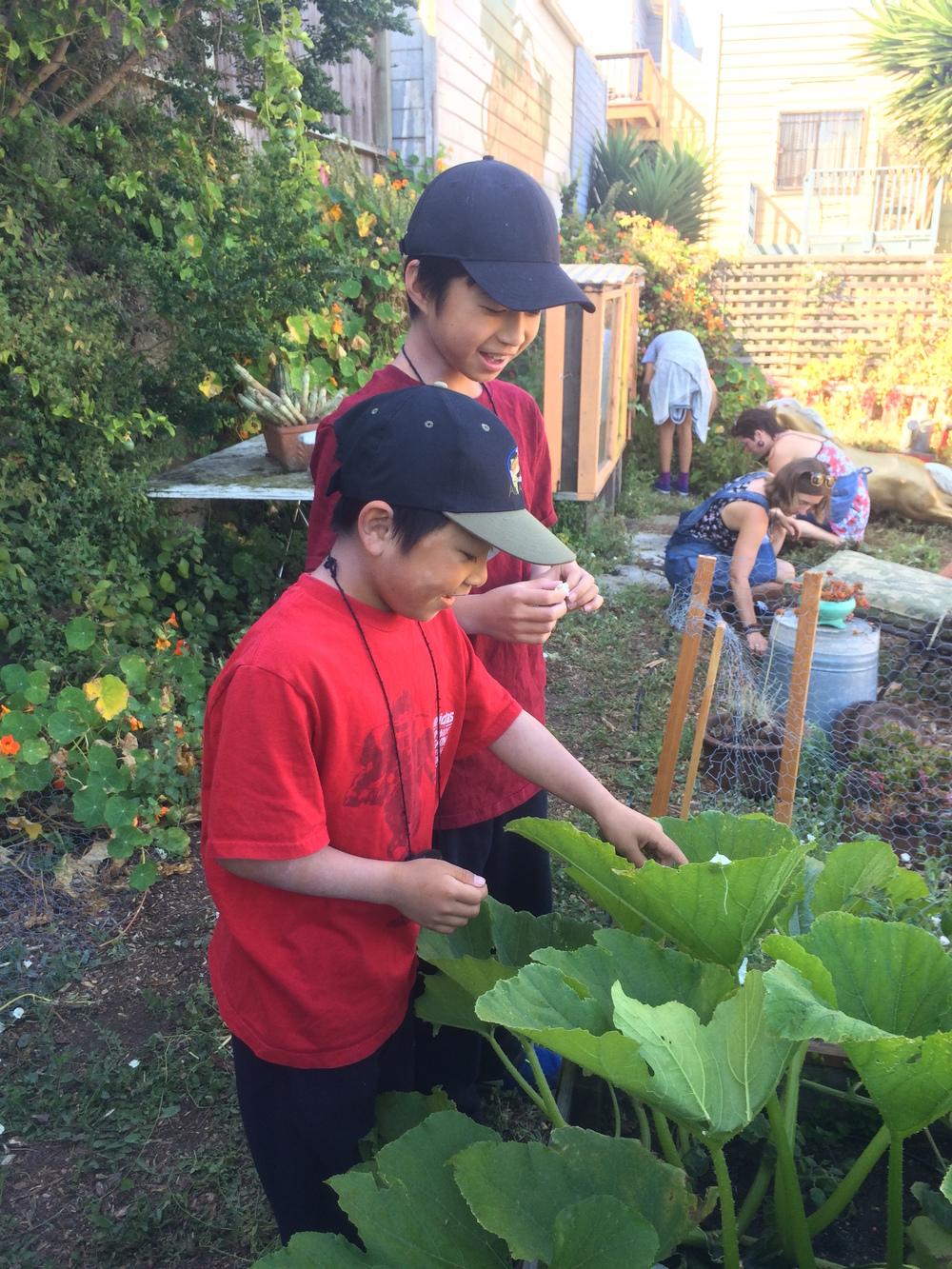 S4D3 2015 grant & garrett garden.jpg