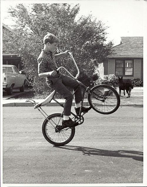 pop a wheelie.jpg