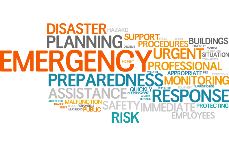 Emergency Wordle.jpg