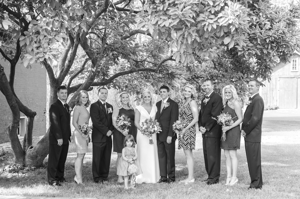 Willow Tree Wedding in Dayton, Ohio by Andrea Dozier